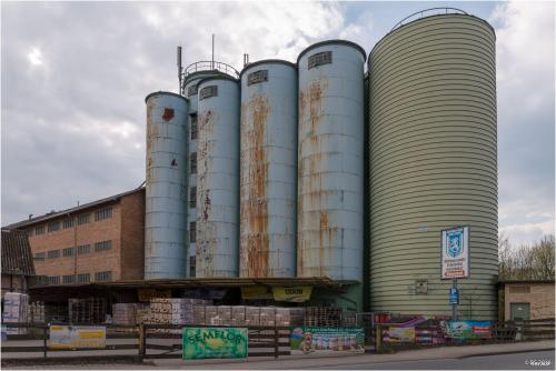 Gifhorn Cardenap Mühle
